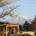 Mt Ibuki from Nagahama